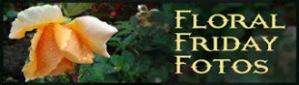 FFF (1)