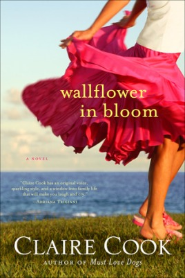 wallflower in bloom 13259643