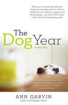 dog year18693764