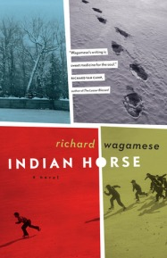 indian horse 11994903