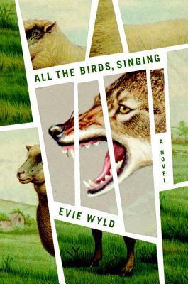 all the birds 18142324
