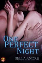 one perfect night 10382150