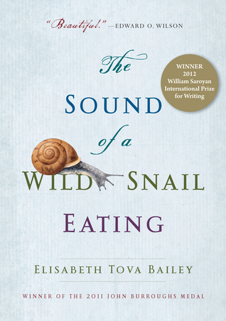 sound of wild snail 8303977